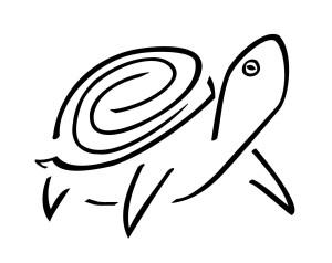 stylized-turtle-tattoo