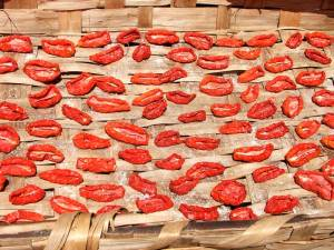 PomodoriSecchialsoleb